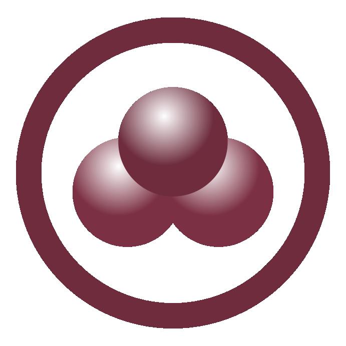 Logo Bnadeira da Paz 2021_1 com borda